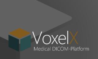 VoxelX ICO
