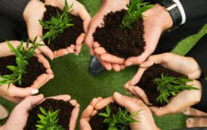 Organicco for Children